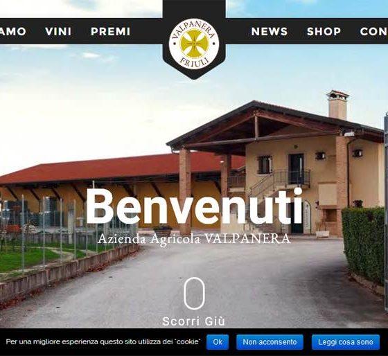 Sito internet per azienda vinicola